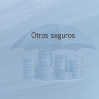 Empresa de Servicios y asesoría de seguros, fianzas, arrendamientos.