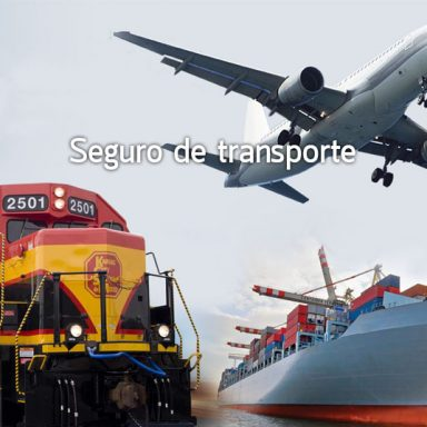 seguro_transporte