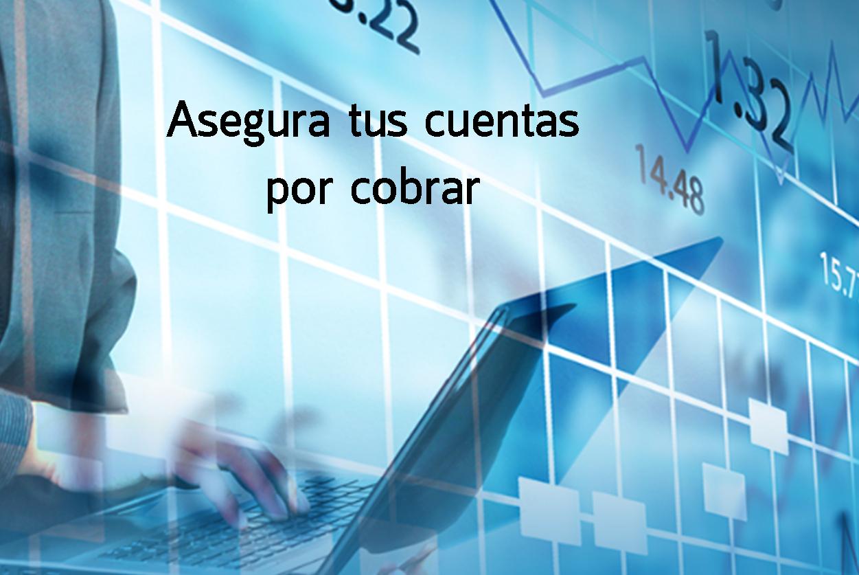 seguro_de_credito
