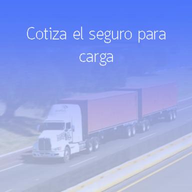 Cotiza tu seguro para carga
